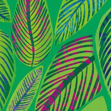 Palm Blended