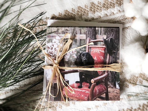 English Cocker Spaniel Holly Red Chair // Set of 6 Notecards