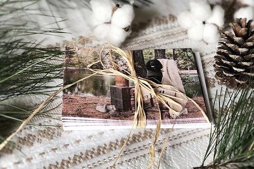 English Cocker Spaniel Holly // Set of 6 Notecards