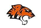 tiger.webp