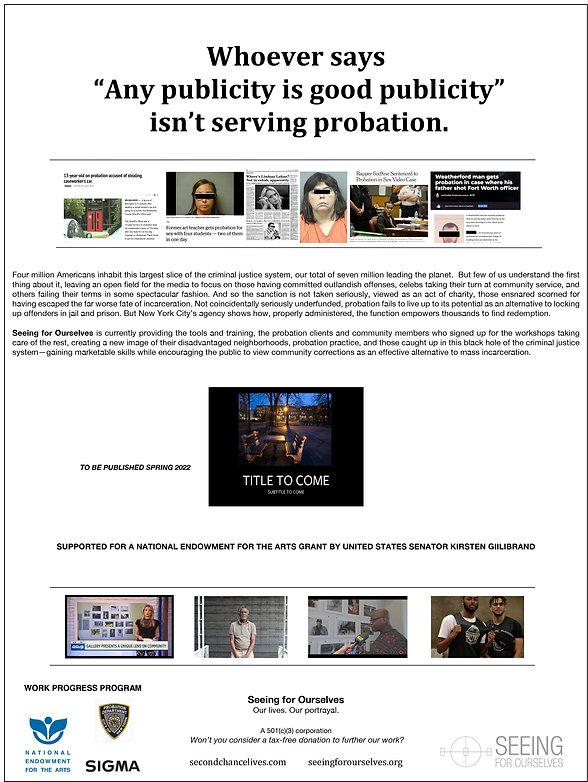 Flyer on probation prepared for HEHG.jpg
