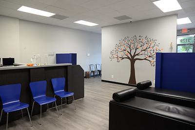 Treatment area
