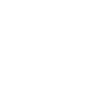 Snøfnugg.png