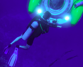 Diving With Sub.PNG