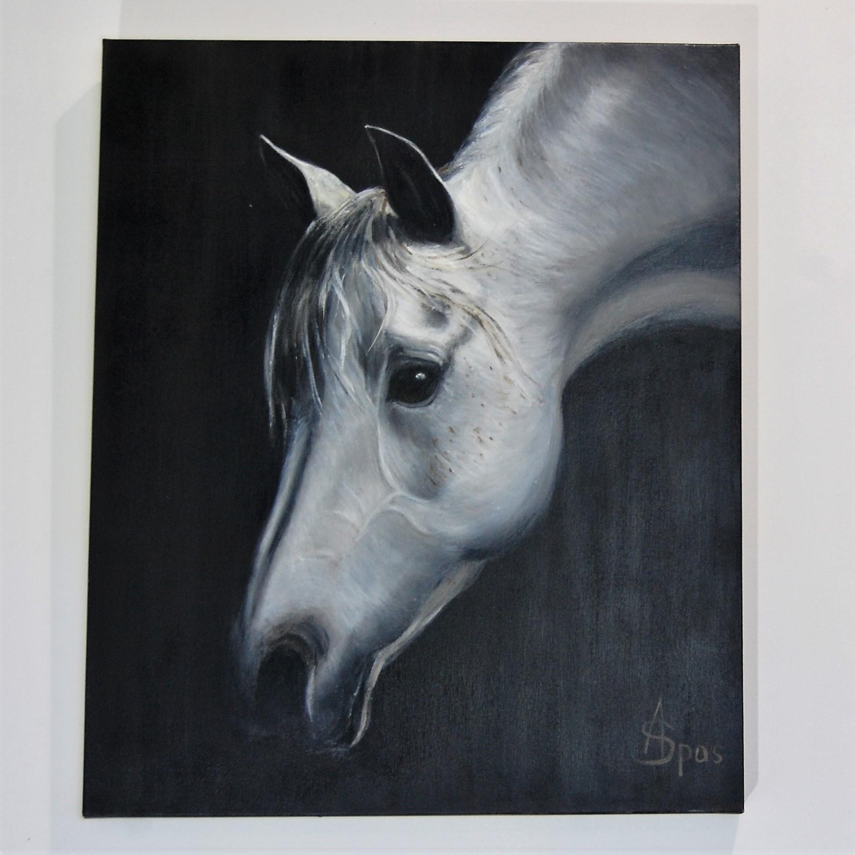 cheval blanc 50x60