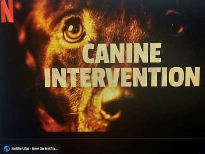 Cainine intervention cover.jpg