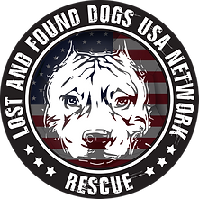 Lost and Found Logo_ PNG file.png