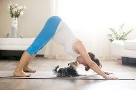 Yoga pode melhorar o sono de quem tem dor na lombar, aponta estudo