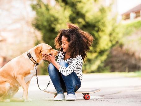 Sincronia entre crianças e cães favorece o desenvolvimento
