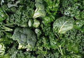 Folhas verdes: conheça as mais comuns e seus benefícios