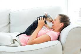 Brincar com cães reduz stress por até 10 horas, revela estudo