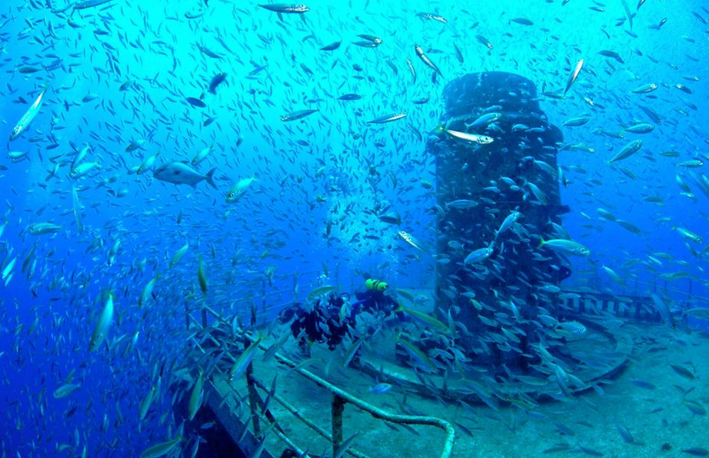 deck of the Gen. Hoyt S. Vandenberg in the Florida Keys National Marine Sanctuary, home to fish life