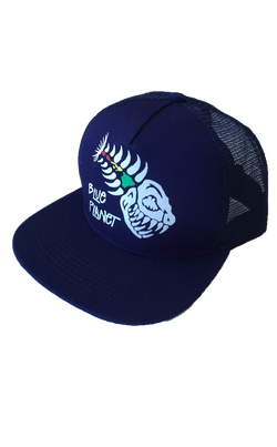 Blue Planet Cap/ Hat