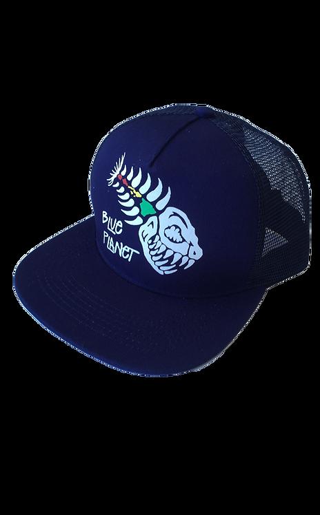 Blue Planet Cap