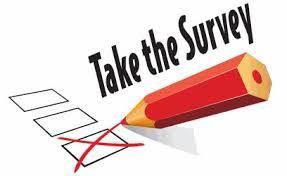 Tech Ready Survey