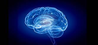 Neurosciences et ITA