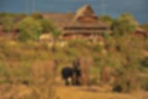 5353Victoria Falls Safari Lodge Signatur