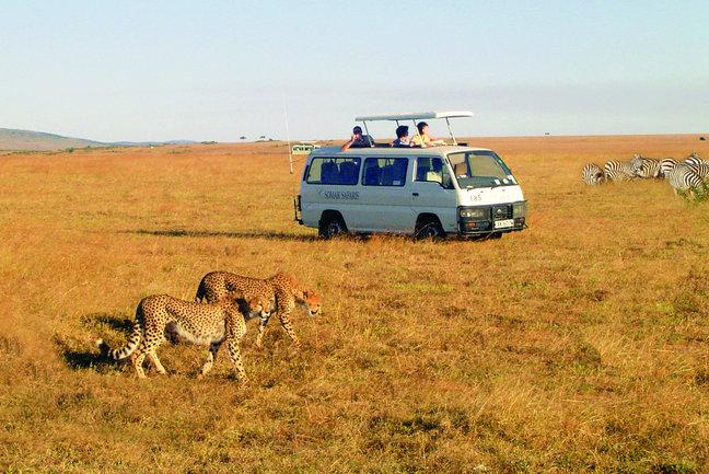 Masai Mara 6