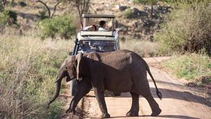 (Southern Africa) Botswana, Namibia, Zimbabwe, Zambia, Mozambique, Seychelles & Madagascar Holidays