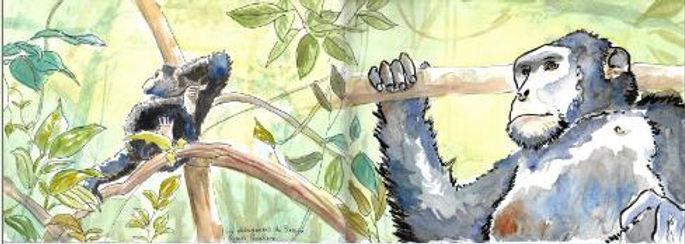 chimpanzee sketch.jpg