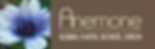 Logo + tekst_bewerkt.png