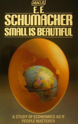 """Livre """"small is beautiful""""- français"""