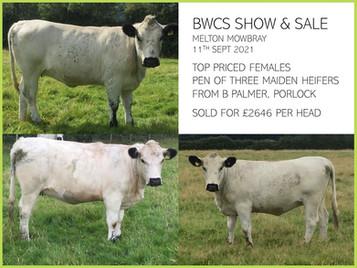 BWCS Autumn Show & Sale Melton Mowbray