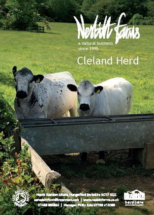 Cleland 2020