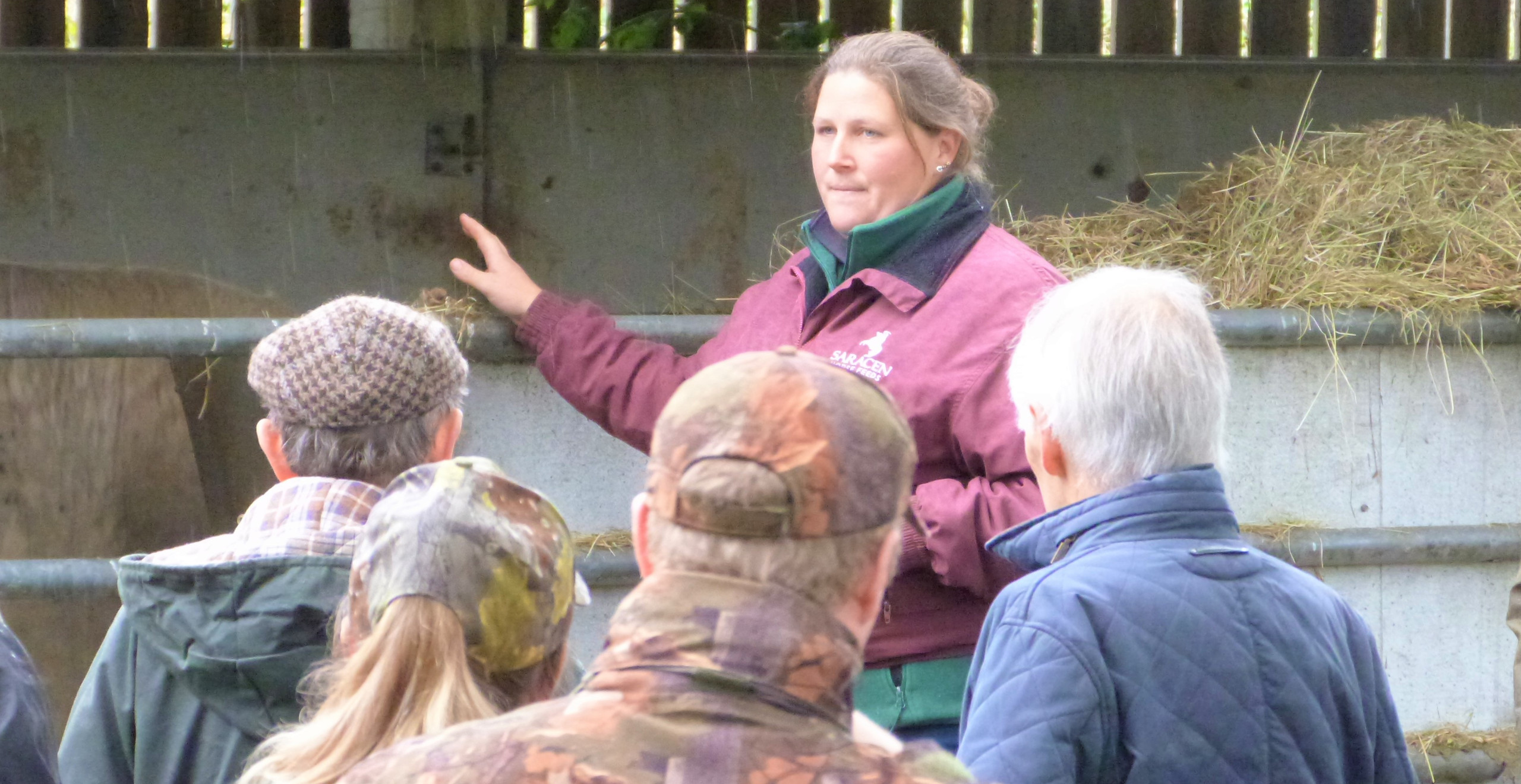 Caroline Court introduces the herd