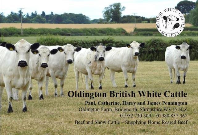 Oldington 2020