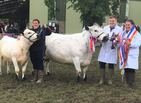 Royal Three Counties Show 2019