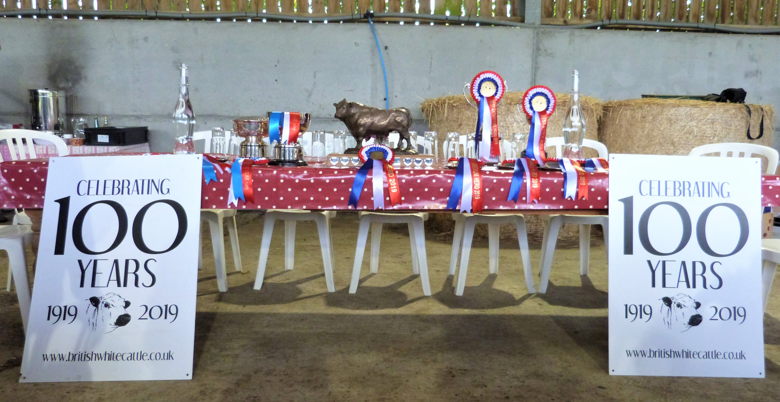 Trophy table ready for presentation!