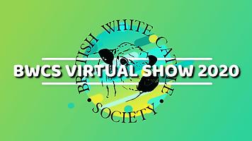 BWCS VIRTUAL SHOW 2020.png