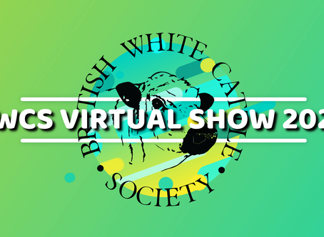 Championship voting now open for BWCS Virtual Show