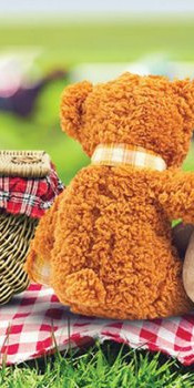 Teddy-Bears-Picnic-700x350-c-center.jpg