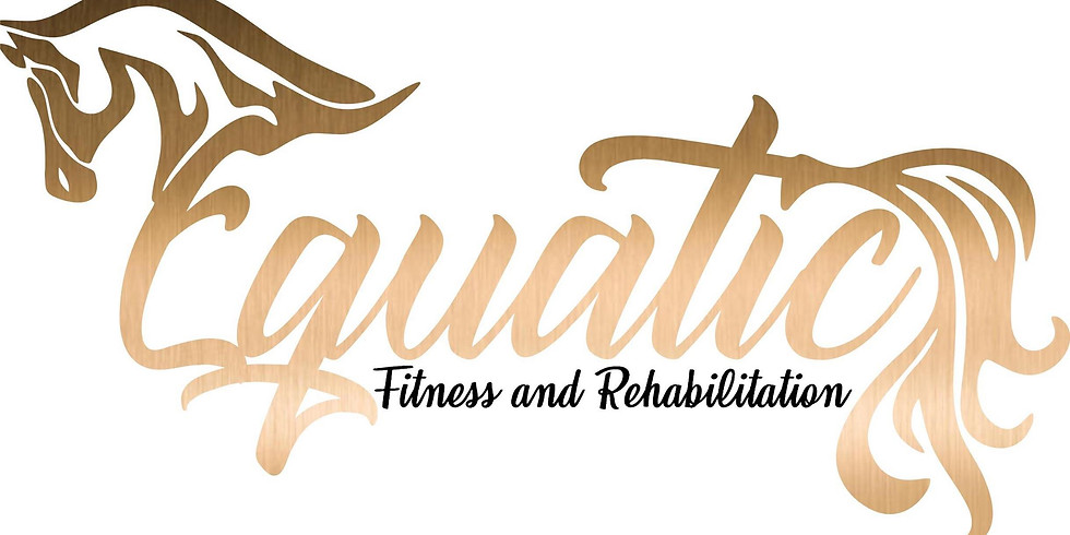 Equatic Fitness & Arena Friday Night Series