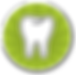 Tooth Icon with Green Circle