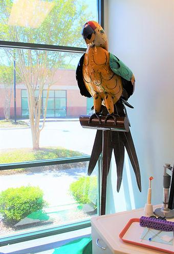 Parrot Model