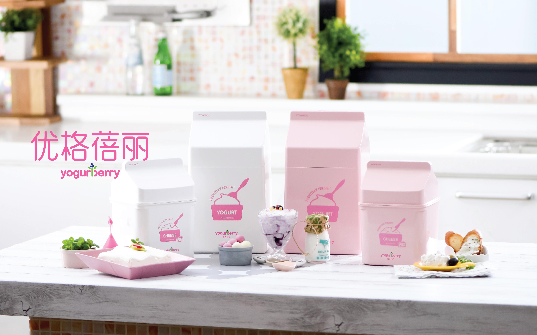 요거베리 BI _ 중문 브랜드