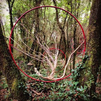Album South Forest (2016), Arsenic Solaris