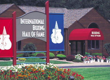 BWAA Info Sheet For IBHOF Nominees