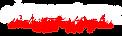 autotintz logo in white.png