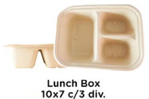 Lunch Box c/3 Div.