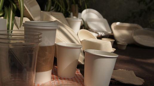Desechables Biodegradable   Distribudora   Tulum, Quintana Roo