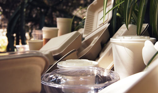 Desechables Biodegradable | Distribudora | Tulum, Quintana Roo