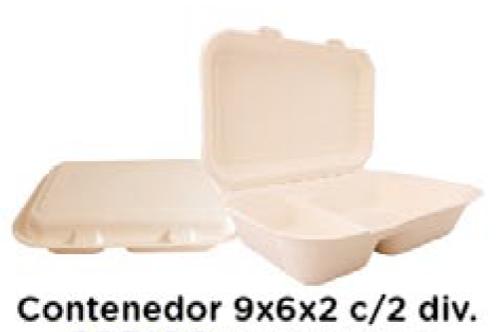 Contenedor 9x6x3 c/2 div
