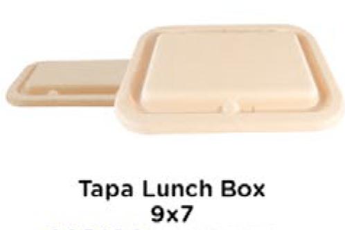 Tapa Lunch Box 9x7