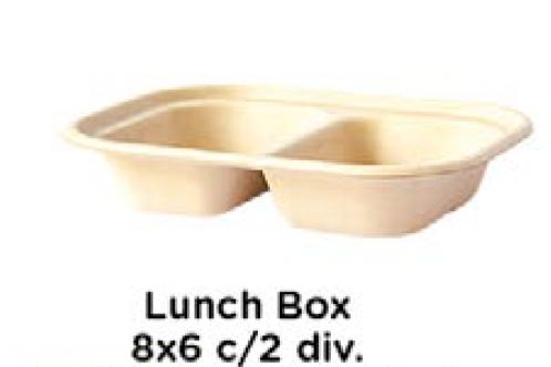 Lunch Box8x6 c/2 div.