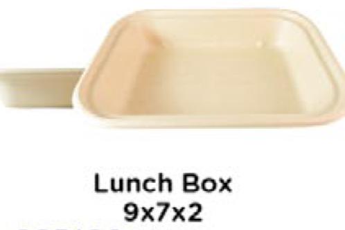 Lunch Box 9x7x2