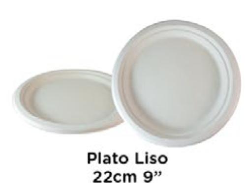 "copy of Plato Liso 22cm 9"""
